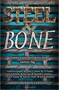 The cover for Steel and Bone